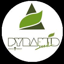 Pyramid Seeds