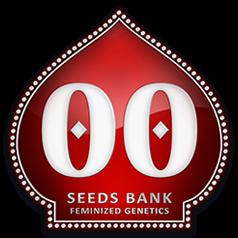 OO seeds