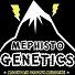 Mephisto Genetics