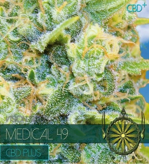 Medical 49 CBD+ Feminized by Vision Seeds