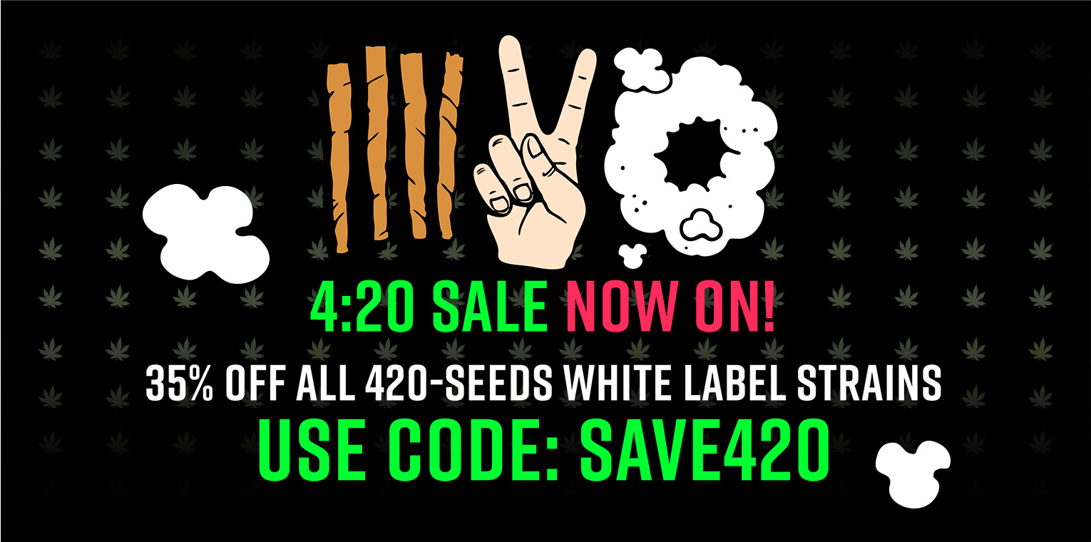 35% OFF ALL 420-Seeds White Label Strains