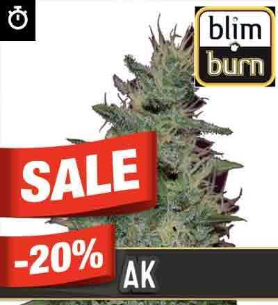 AK Automatic By Blim Burn Seeds