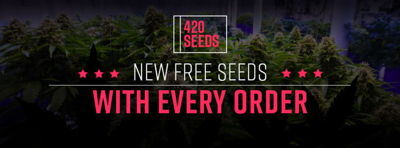 New Free seeds banner