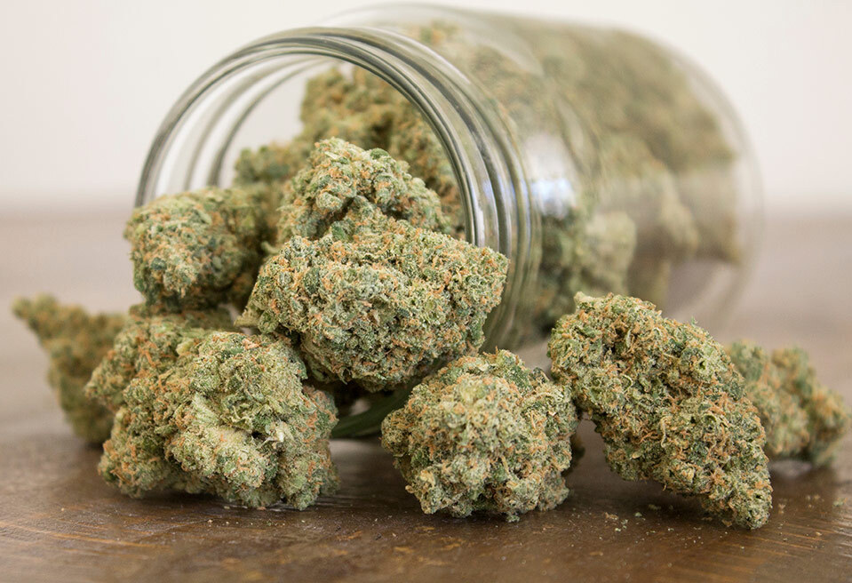 The Complete guide to harvesting, drying and curing weed
