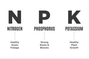 npk - best soil for growing cannabis